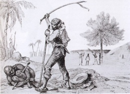 Бразилия (март — июль 1832 г.)